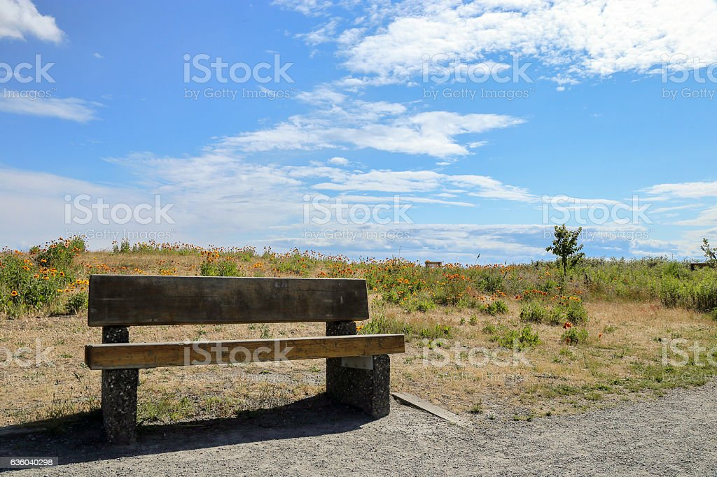 Bench on the field stock photo