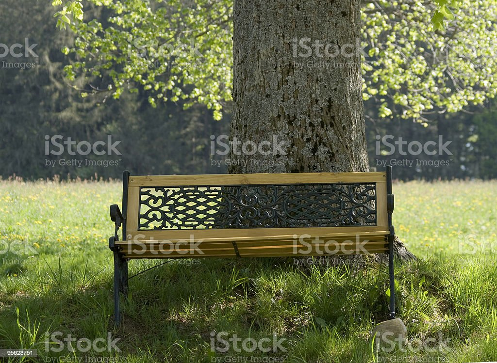 bench on tree royalty-free stock photo