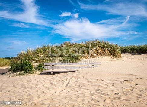 Bench, partly covered with sand,  in the nature reserve of the dunes of Schoorl, North Holland, Netherlands