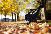 (selective focus) A bench under some beautiful trees with yellow leaves during the fall season in Hide Park, United Kingdom.