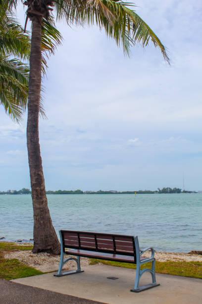 Bench with a view just after a storm at Bird Key Car Park - Sarasota, Florida stock photo