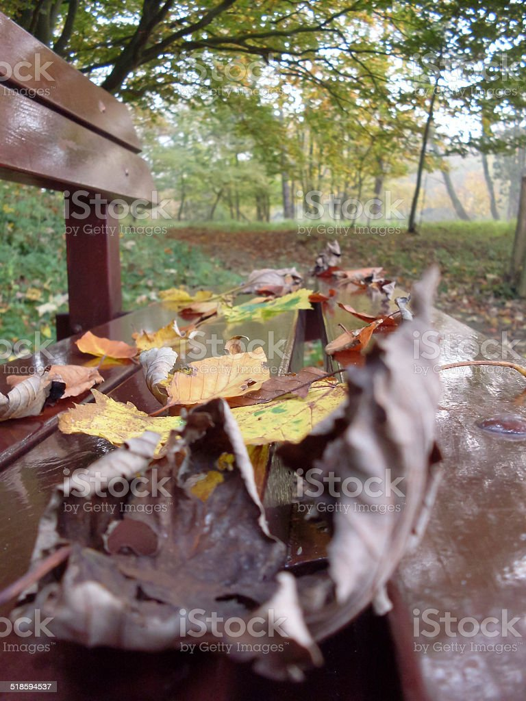 Bench with leaves royalty-free stock photo