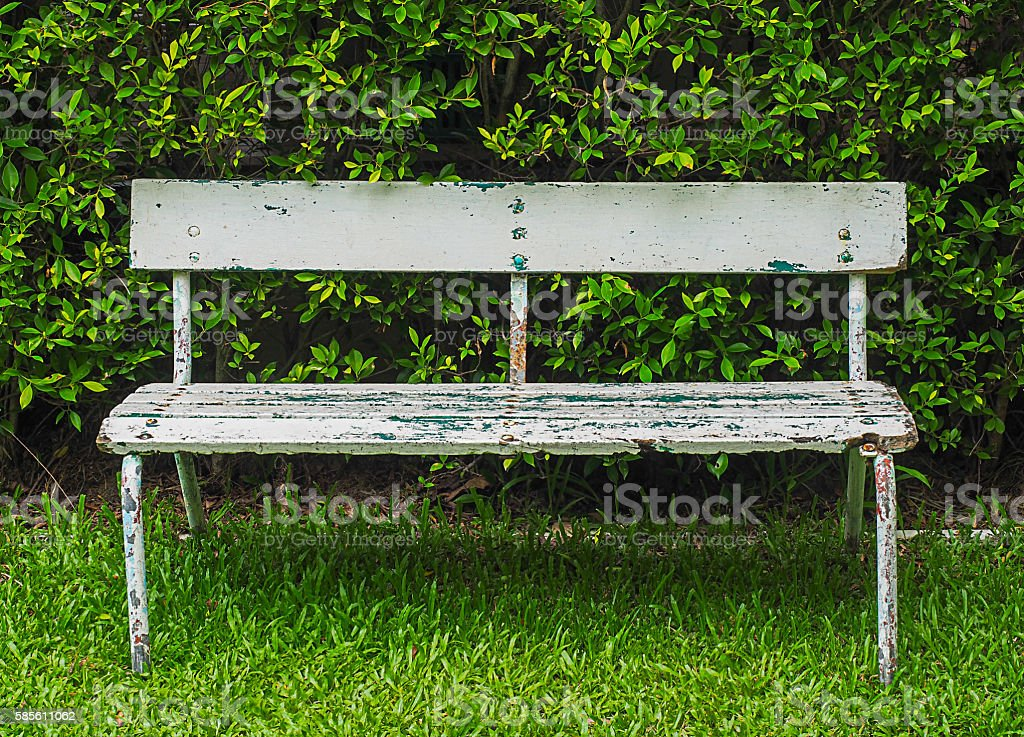 bench with the brush Background stock photo