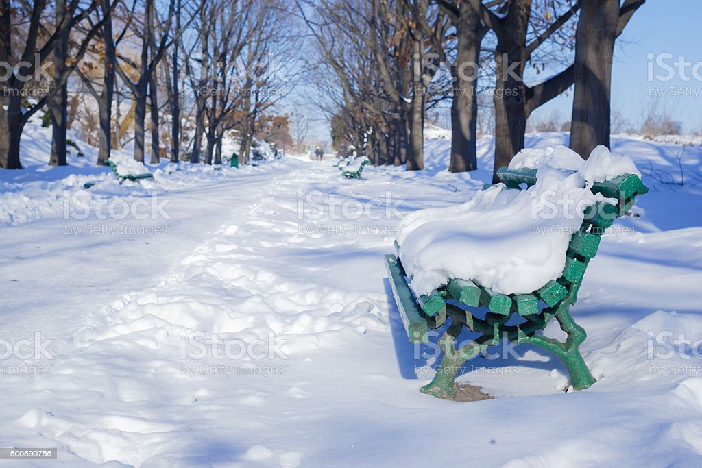 Benche in a park covered with snow stock photo