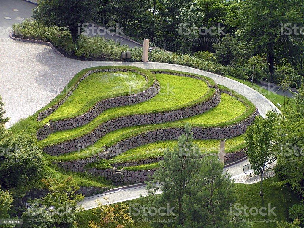 Benched Wavy Grass-Plot royalty-free stock photo
