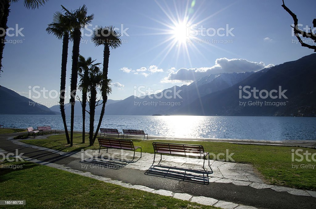 Benches and palm trees on the lakefront stock photo