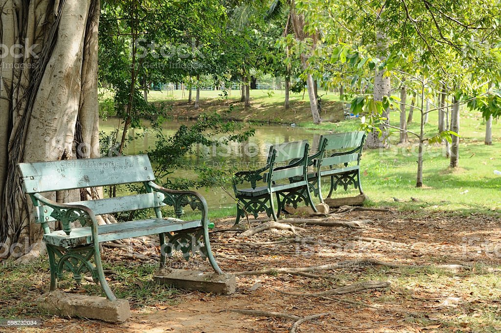 Benches in big garden for relaxing foto royalty-free