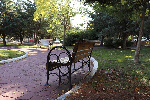 Benches in the city park in autumn, no people, empty