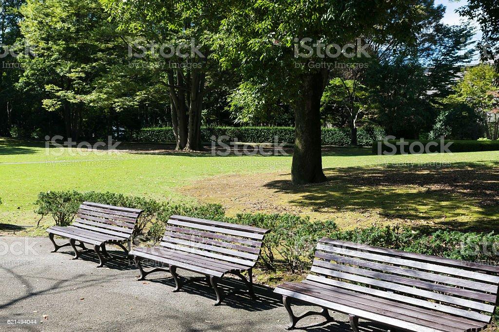 Bänke in the park  Lizenzfreies stock-foto