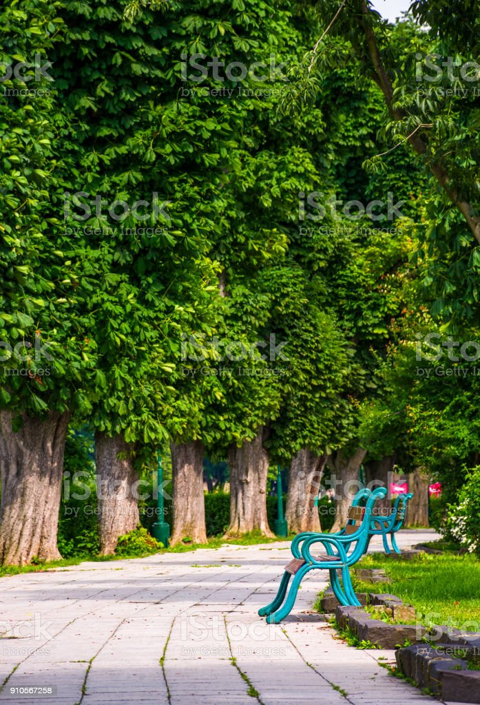 benches on Kiev embankment in Uzhgorod stock photo