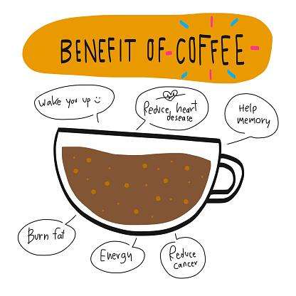 Benefit of coffee chart illustration