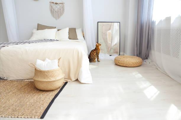 bengalische katze mit grünen augen im schlafzimmer - geparden bettwäsche stock-fotos und bilder