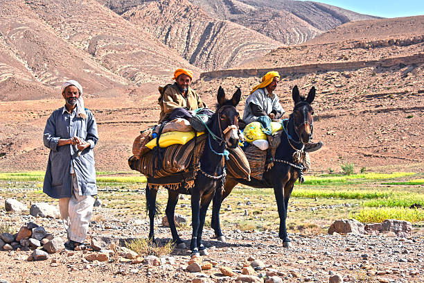 Berbers are indigenous people to Atlas Mountains of Morocco. – zdjęcie