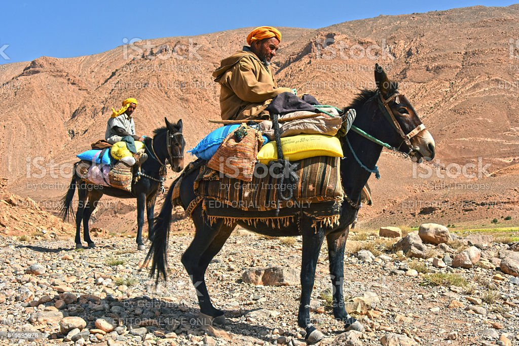Berbers are indigenous people to Atlas Mountains of Morocco. stock photo