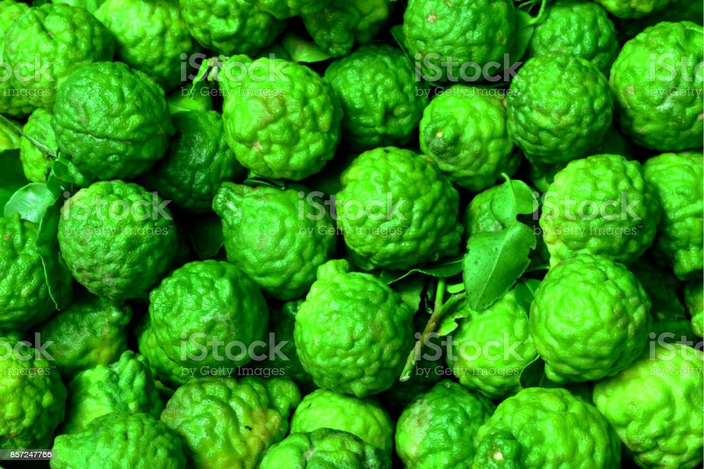 Bergamot fruit, group of bergamot stock photo