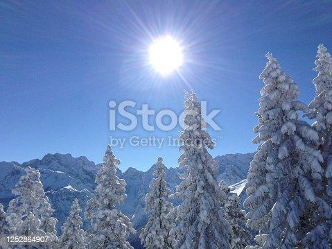 Schneebedeckte Tannen und Berggipfel mit strahlend blauen, wolkenlosen Himmel