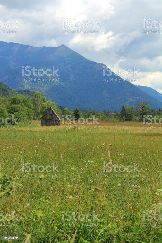 Bergpanorama stock photo