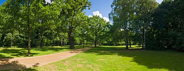 ベルリンティーアガルテン夏の色鮮やかな緑の木々、静かな公園のドイツ - グローサーシュテルン広場 ストックフォトと画像
