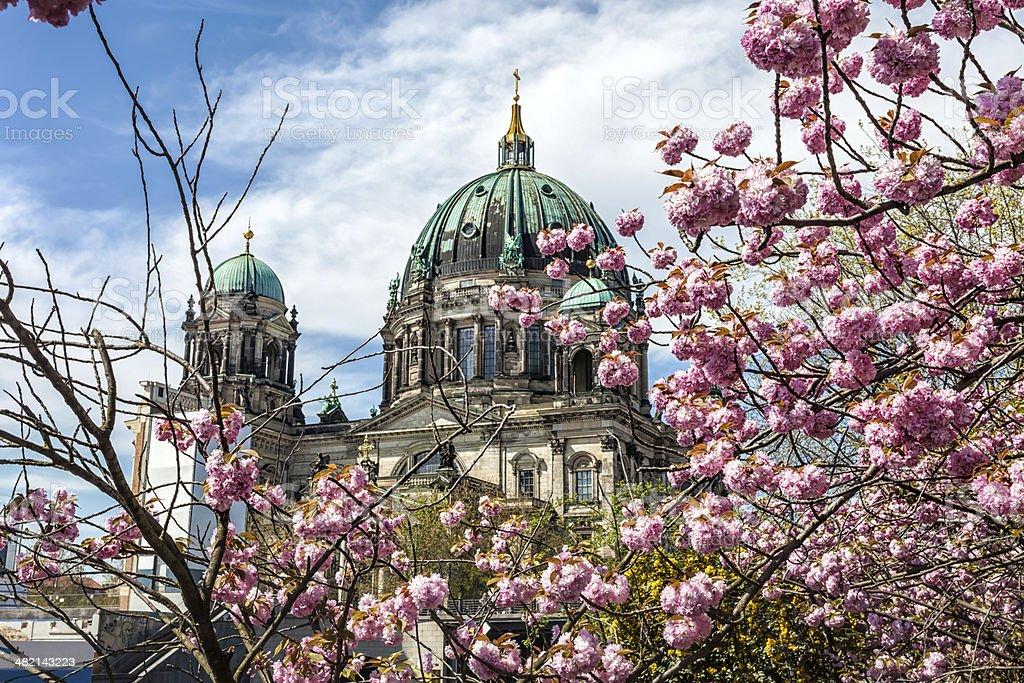 Berliner Dom in Spring stock photo