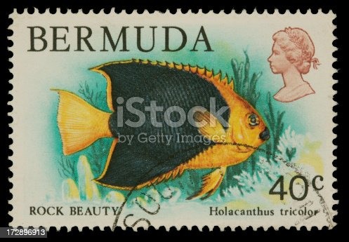 1978 Bermuda stamp depicting a Rock Beauty (type of Angelfish). Canon 40D with 100mm macro; no sharpening.