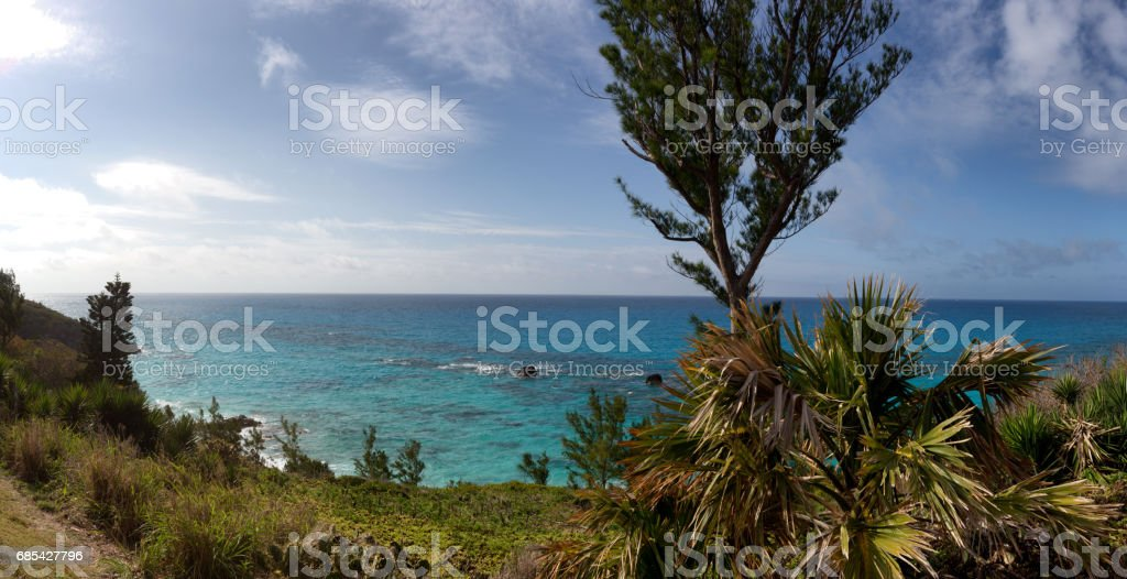 Bermuda Secluded Beach foto de stock royalty-free