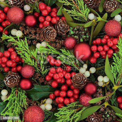 istock Berries and Baubles 486831350