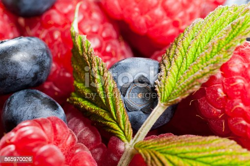 841659594 istock photo berries background 865970026