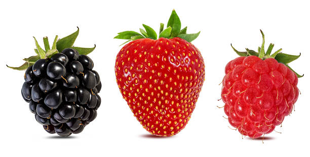 Berries collage isolated on white background with clipping path Collage of fresh berries isolated on white background with clipping path blackberry fruit stock pictures, royalty-free photos & images