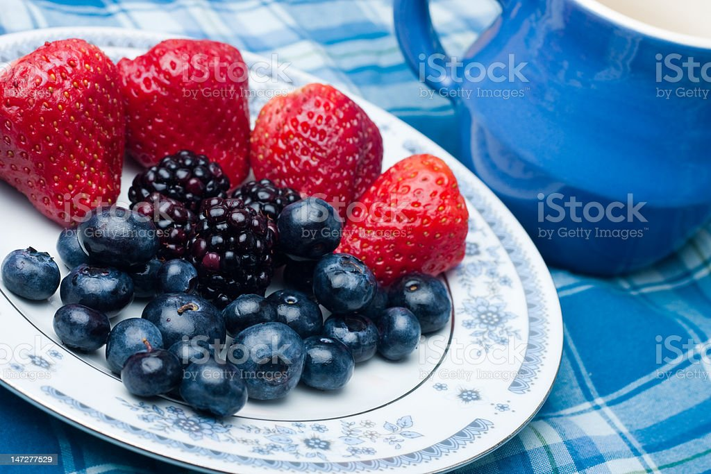 Berries Collection stock photo