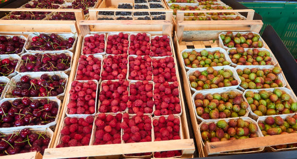 Beeren in kleinen Körben – Foto