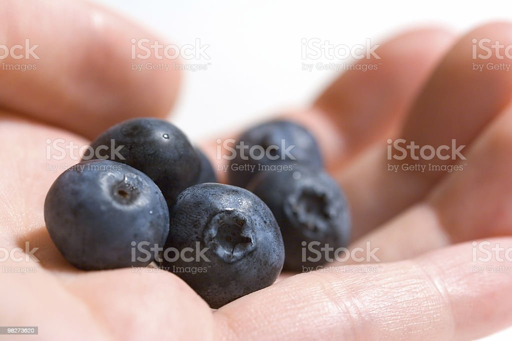 Berries in the Hand royalty-free stock photo