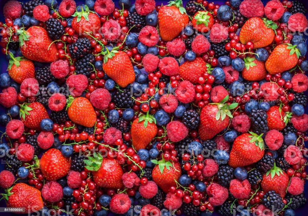Berries overhead closeup assorted mix in studio on dark background stock photo