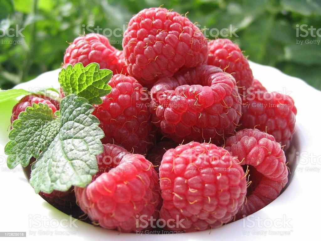 Berries! royalty-free stock photo