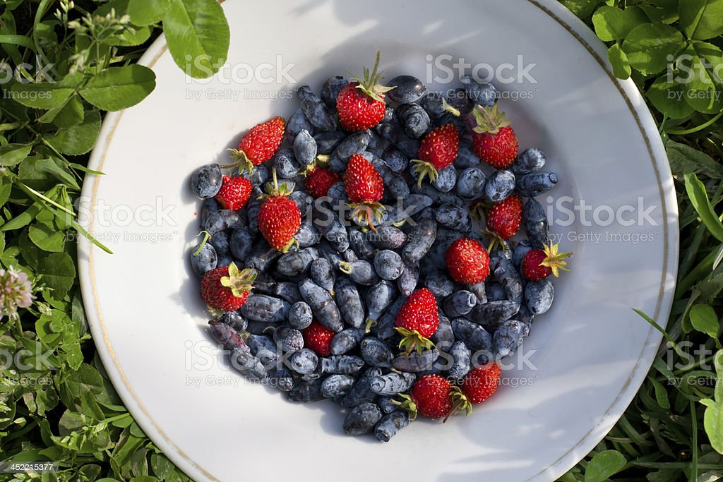 Berries royalty-free stock photo