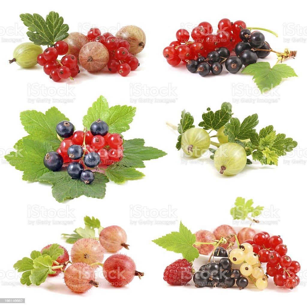 Berries set royalty-free stock photo