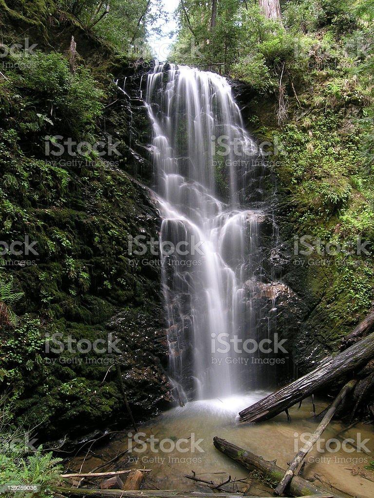 Berry Creek Falls stock photo
