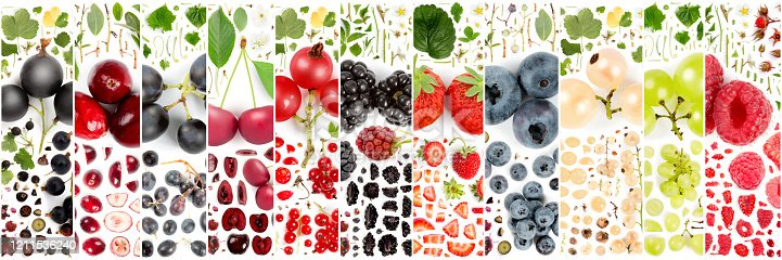 827935944 istock photo Berry Fruit Slice and Leaf Collection 1211536240