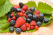 Blackberry Berries and Green Foliage on Blurred Background. Summer season. Web banner.