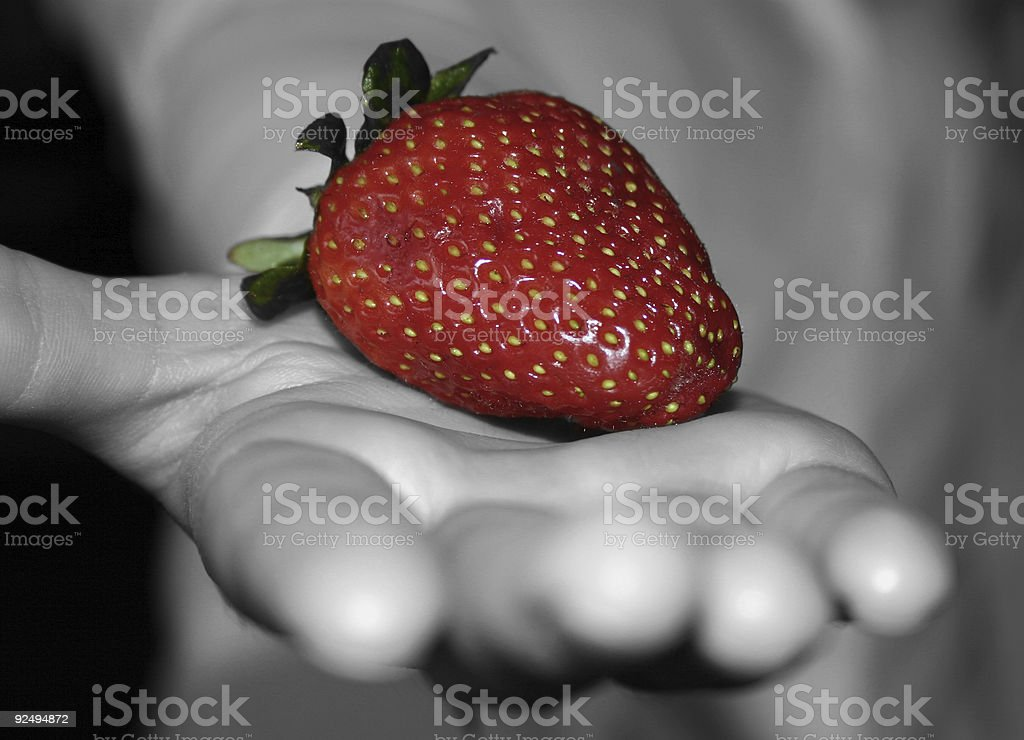 Berry in Hand royalty-free stock photo