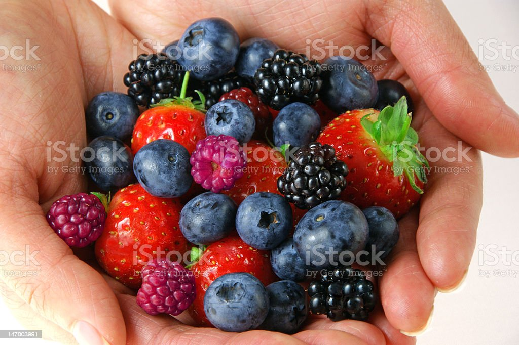 Berry selection royalty-free stock photo