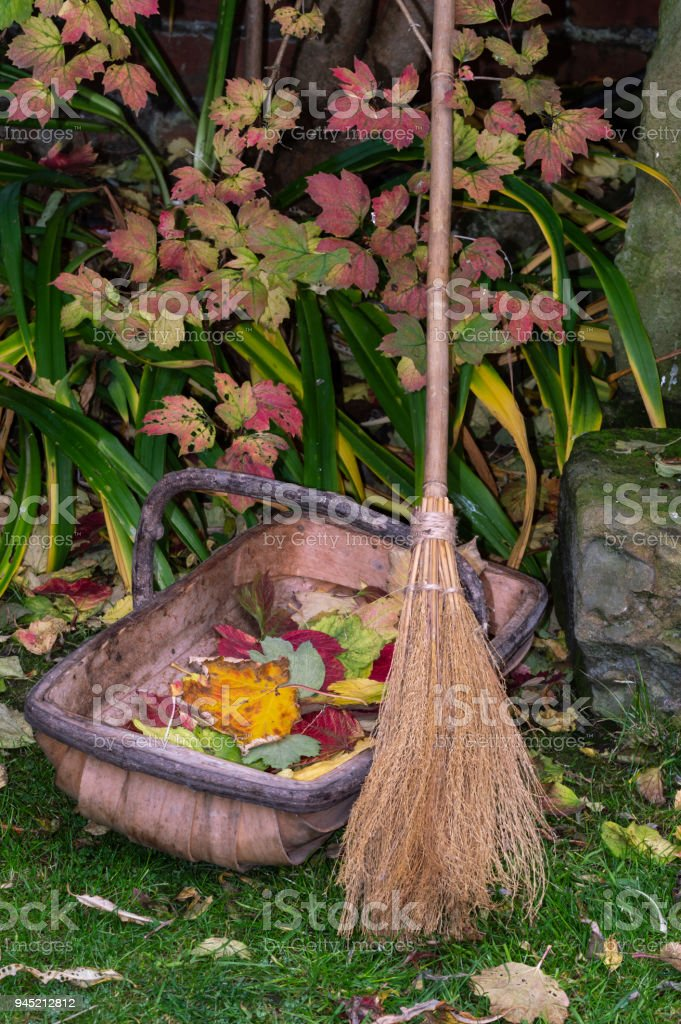 Besom broom and trug. Clearing autumn leaves in garden. stock photo