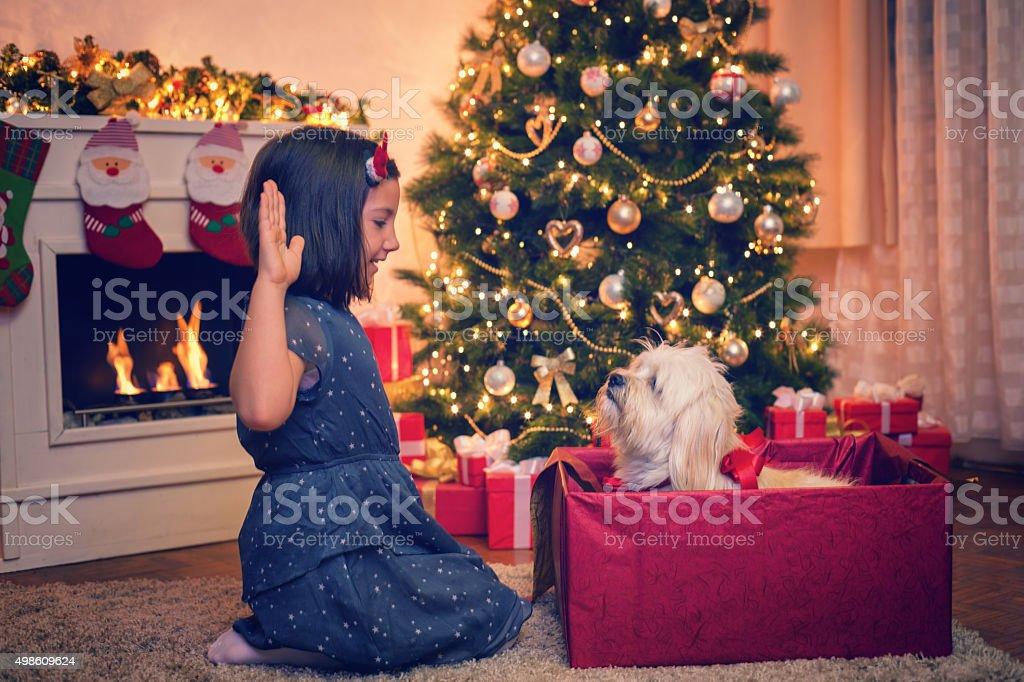 Best Christmas Gift stock photo