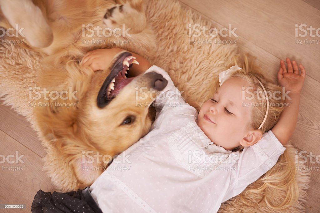 Best friends for life stock photo