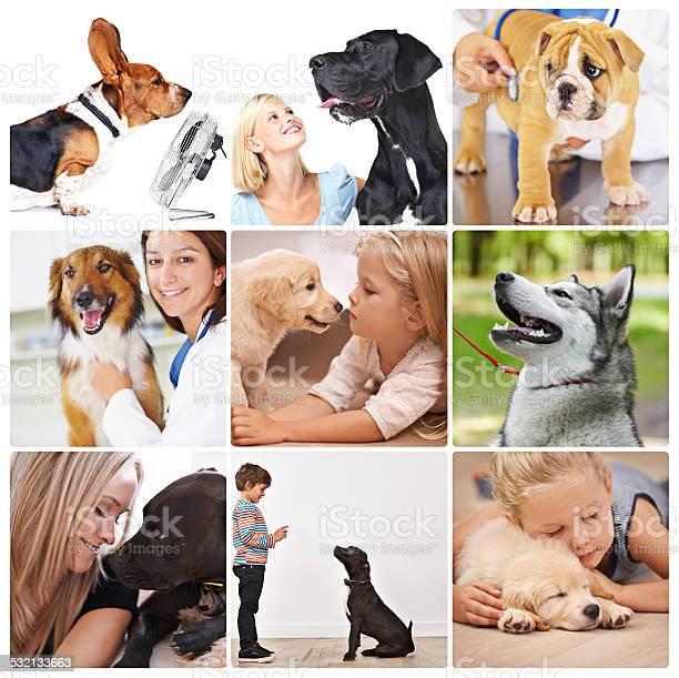 Best friends for life picture id532133663?b=1&k=6&m=532133663&s=612x612&h=pjmutlyfjsm8aita19n6 zui5lr1jwjpck3reb2ya9m=