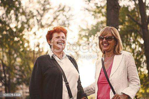 istock Best friends in park smiling 1050284468