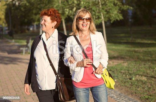 istock Best friends in park walking 966963448