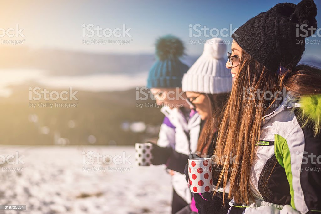Best friends on winter vocation stock photo