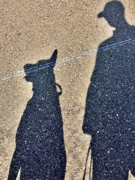 Best friends shadow picture id1223683665?b=1&k=6&m=1223683665&s=612x612&w=0&h=c0nylfexyv7 ulksqtsjzlmyu6mdlmrhyt6a60yox4k=