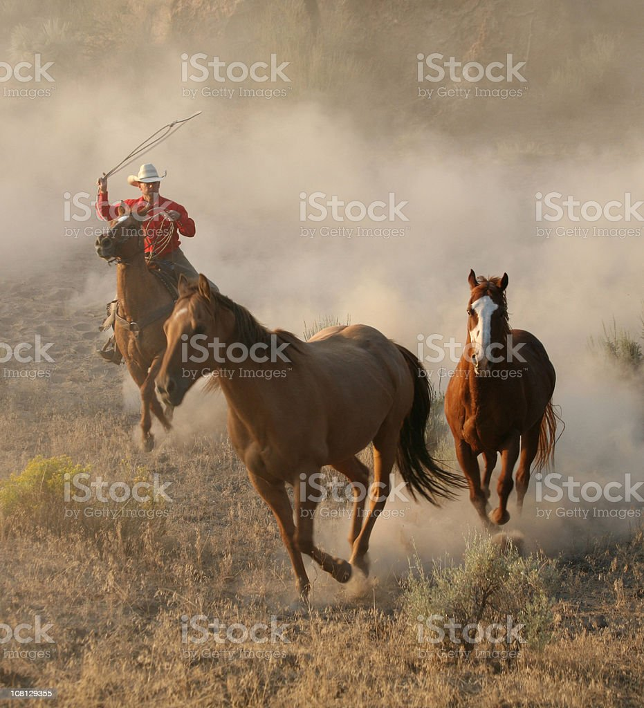 Best of the west royalty-free stock photo