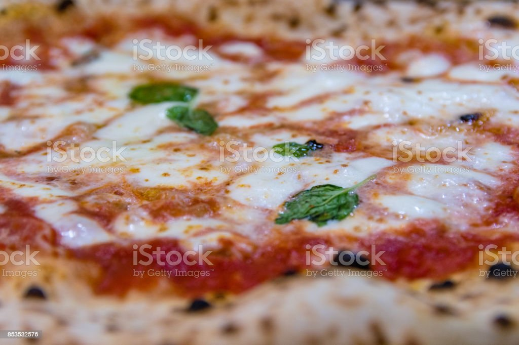 Best world pizza stock photo